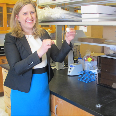 uconn researcher using silk to treat chronic diseases