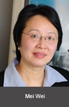 faculty wei